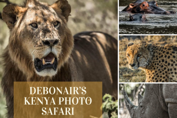 Debonair's Kenya Photo Safari 2018